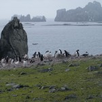 View with Penguins on Aitcho Island, Antarctica