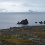 Moss Plains and View on Robert Island, Antarctica