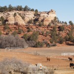 Horse area in Best Friends in Kanab Canyon