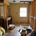 Looking in from bedroom after almost all interior studs removed