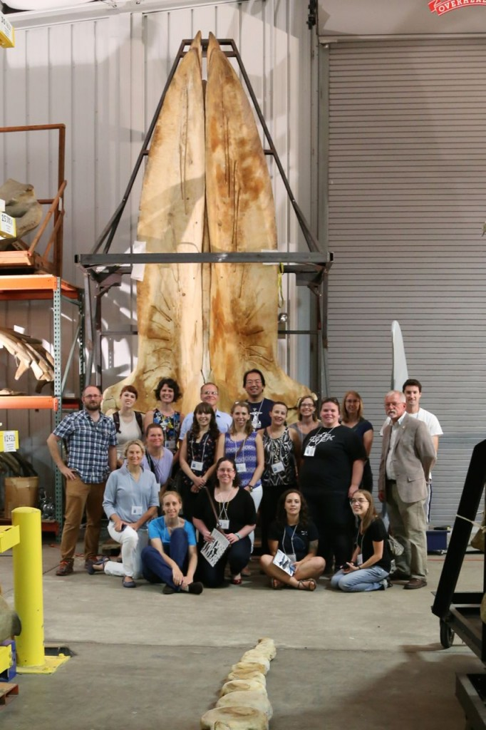 #SIWhales participants with the North Atlantic blue whale skull