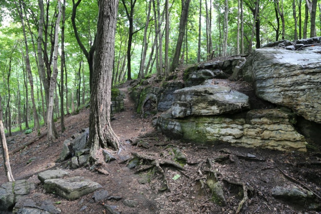Rock outcroppings near the trails