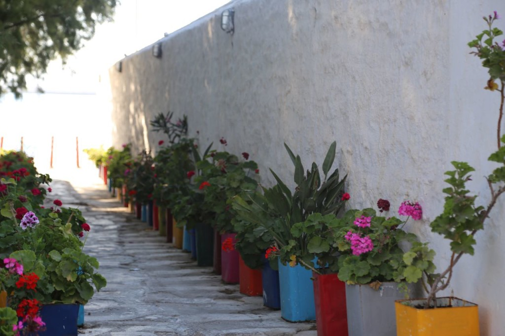 Colorful pots in an alley