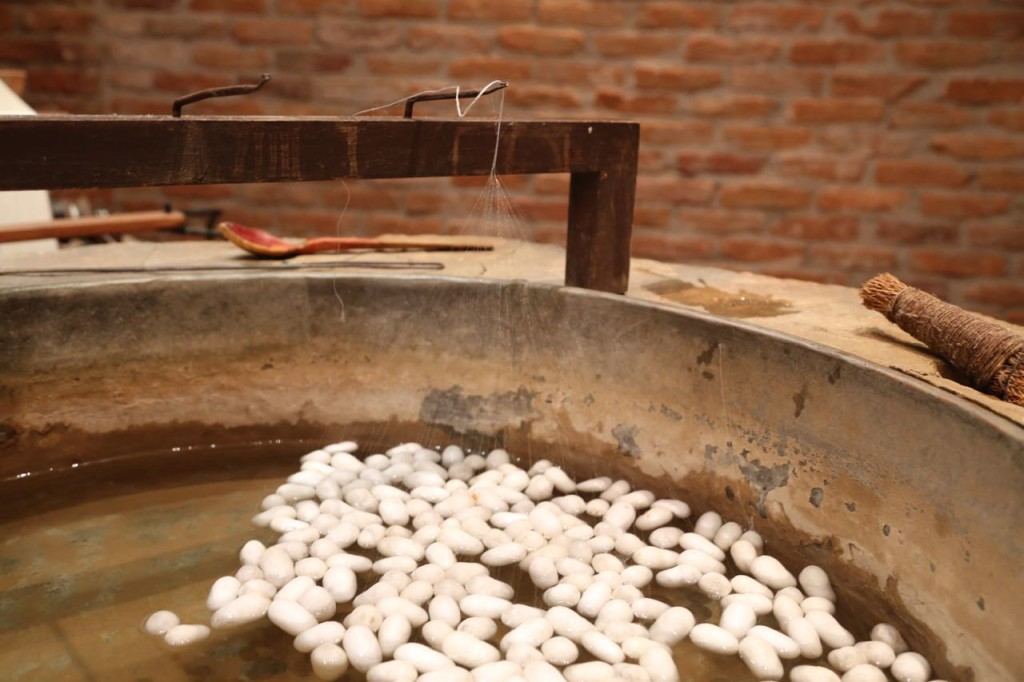 Silk threads being separated from cocoons