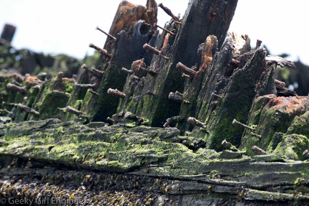 Wooden ship remains
