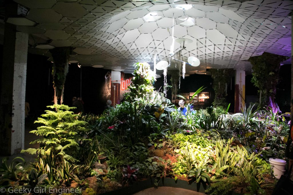 Display of plants and ceiling reflecting sunlight
