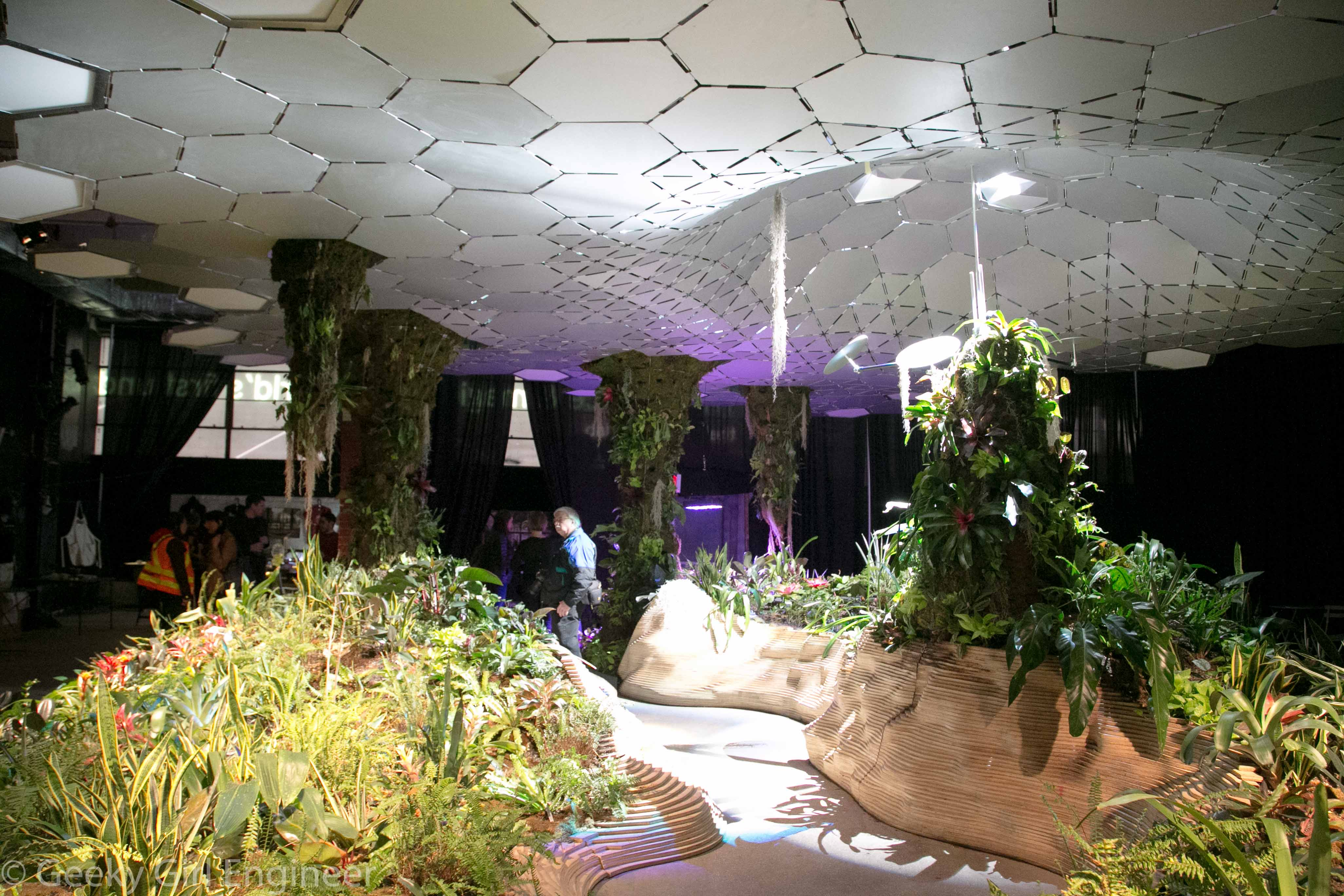 Display of plants, including vertical plant elements, and ceiling reflecting sunlight